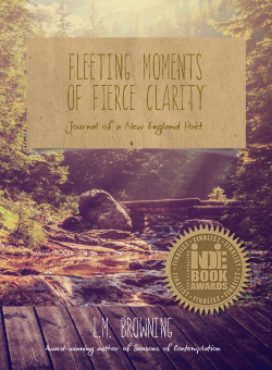 Fleeting Moments of Fierce Clarity